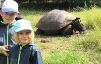 Urlaub mit Kindern Galapagos